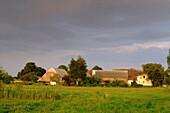 Landscape with farm in Lieper Winkel, Usedom, Ostseeküste, Mecklenburg-Western Pomerania, Germany
