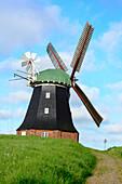 Windmill at Salzhaff, Rerik, Ostseeküste, Mecklenburg-Western Pomerania Germany