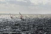 Kitesurfing and windsurfing on Ummanz, Rügen, Ostseeküste, Mecklenburg-Western Pomerania, Germany