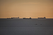 Oil tanker of the Persian Gulf, Iran, Asia
