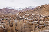 View on the city Leh in Ladakh, India, Asia