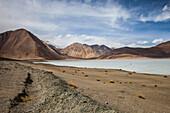 Pangong Tso saltlake in Ladakh, India, Asia