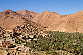 Oasis next to Tafraoute, Morocco, Africa