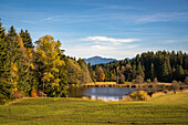 Autumn mood at Rantscher Weiher in the foothills of the Alps around Garmisch-Partenkirchen with view to Mount Heimgarten and Mount Herzogstand , Bad Kohlgrub, Upper Bavaria, Germany