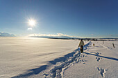 A woman with her dog on a walk through the snowy landscape at Riegsee, Aidling, Upper Bavaria, Germany