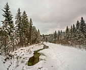 Winter landscape with partially frozen river Ammer at Scheibum, Saulgrub, Upper Bavaria, Germany