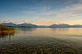 View over the Chiemsee to the alps, Chieming, Upper Bavaria, Germany