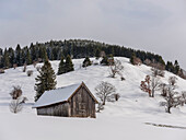 Winter landscape in the Ammergauer Alps, Oberammergau, Upper Bavaria, Germany