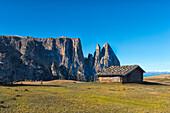 Alm (mountain hut) in the fields, Alpe di Siusi, Trentino, Italy, Europe