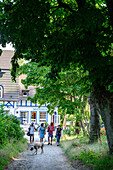 Tree Alley with walkers in the village Kloster, Hiddensee, Ruegen, Baltic Sea Coast, Mecklenburg-Vorpommern, Germany