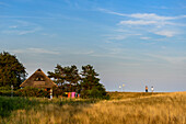 Strollers on the dike in Neuendorf, Hiddensee, Ruegen, Baltic Sea coast, Mecklenburg-Vorpommern, Germany