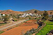 Village of Toto near Pájara, Fuerteventura, Canary Islands, Islas Canarias, Atlantic Ocean, Spain, Europe