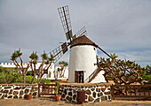 Mill in the museum Museo del Queso Majorero and Molino de Antigua at Antigua, Fuerteventura, Canary Islands, Islas Canarias, Atlantic Ocean, Spain, Europe