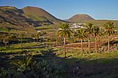 Farmhouse at Haria, Lanzarote, Canary Islands, Islas Canarias, Spain, Europe