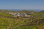View at the village of Haria, Lanzarote, Canary Islands, Islas Canarias, Spain, Europe