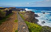 Way along the wild rocky coast at Buenavista del Norte, Tenerife, Canary Islands, Islas Canarias, Atlantic Ocean, Spain, Europe
