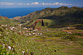 View across luxuriant vegetation at El Palmar, Region of exploitation of volcanic material, Teno mountains, Tenerife, Canary Islands, Islas Canarias, Atlantic Ocean, Spain, Europe
