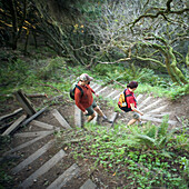 A female and male hiker going down the curved steps in the trail  on Mt. Tamalpais State Park, CA,  USA.