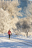 Woman cross country skiing on frosty morning along the Animas River, Durango, Colorado, USA