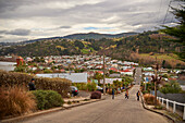 Tourists at Baldwin Street, the world's steepest residential road with an average gradient of 1 in 5 and 350 metres long, Dunedin, Otago, South Island, New Zealand, Pacific