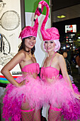 Japanese girls dressed as flamingos at the Halloween celebrations in Shibuya, Tokyo, Japan, Asia