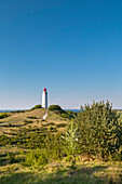 Lighthouse, Dornbusch, Hiddensee island, Mecklenburg-Western Pomerania, Germany