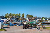 Harbour, Vitte, Hiddensee island, Mecklenburg-Western Pomerania, Germany