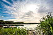Lake Wolgast, Usedom island, Mecklenburg-Western Pomerania, Germany