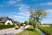 Cyclists, Vitte, Hiddensee island, Mecklenburg-Western Pomerania, Germany