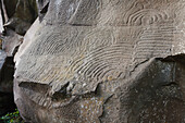 Petroglyphen, Parque Cultural La Zarza, Kulturpark La Zarza, Kunst der Ureinwohner, prähistorisch, bei La Mata, UNESCO Biosphärenreservat, La Palma, Kanarische Inseln, Spanien, Europa