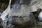 petroglyphs, Parque Cultural La Zarza, Cultural Park La Zarza, indigenous art, prehistoric, near La Mata, UNESCO Biosphere Reserve, La Palma, Canary Islands, Spain, Europe