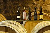 wine bottels and barrals, Bodega Matias i Torres, Fuencaliente, UNESCO Biosphere Reserve, La Palma, Canary Islands, Spain, Europe