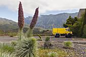 Tajinaste plant, fire service multi purpose vehicle, at visitor centre of Caldera de Taburiente Nacional Park, El Paso,UNESCO Biosphere Reserve, La Palma, Canary Islands, Spain, Europe