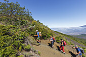 hiking, group, ascent to Birigoyo mountain, 1807m,  Parque Natural de Cumbre Vieja, UNESCO Biosphere Reserve, La Palma, Canary Islands, Spain, Europe