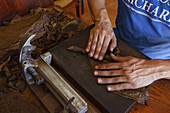hands forming a cigar, worker, man, manufacture of cigars, cigars, Brena Alta, UNESCO Biosphere Reserve, La Palma, Canary Islands, Spain, Europe