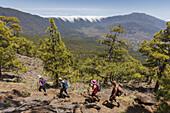 view to Cumbre Nueva with cascade of clouds, hiking tour to Pico Bejenado, mountain, 1844m, crater rim of  Caldera de Taburiente, Parque Nacional de la Caldera de Taburiente, National Park, UNESCO Biosphere Reserve, La Palma, Canary Islands, Spain, Europe