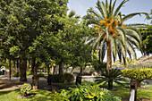 El Jardin de las Delicias, Parque Botanico, town park, Los Llanos de Aridane, UNESCO Biosphere Reserve, La Palma, Canary Islands, Spain, Europe