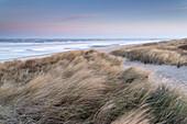 Dune, Dawn, Langeoog, North Sea, East Frisian Islands, East Frisia, Lower Saxony, Germany, Europe