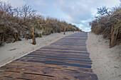 Footpath, Dune, Langeoog, North Sea, East Frisian Islands, East Frisia, Lower Saxony, Germany, Europe
