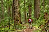 Pamelia Lake Trail, Mt Jefferson Wilderness, Willamette National Forest, Oregon.