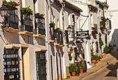 Restaurant in Tipical houses, Zahara de la Sierra, Parque Natural, Natural Park Sierra de Grazalema, White Towns, Pueblos Blancos, Cadiz province, Andalusia, Spain, Europe.