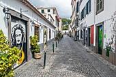 Arte de Portas Abertas, painted on the doors of Tv. das Torres, Funchal's Old Town, Madeira, Portugal.