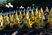 Golden Buddha near Pakse,South Laos,Southeast Asia.