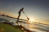 Stand Up Paddler on Lake Starnberg,  Young Boy SUP, Lake Starnberg, Bavaria, Germany