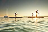 Three Stand Up Paddler on Lake Starnberg,  Lake Starnberg, Bavaria, Germany