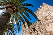 City gate with palm tree, Alcudia, Mallorca, Spain