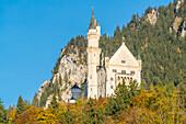 Facade of Neuschwanstein castle from below. Schwangau, Schwaben, Bavaria, Germany.