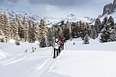 a group of hikers is trekking with snowshoes in Villnössertal, Bolzano province, South Tyrol, Trentino Alto Adige, Italy