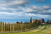 Poggio Covili in Orcia valley Europe, Italy, Tuscany, Orcia valley, Bagno Vignoni