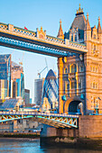 The tower bridge and the London Financial district, London, United Kingdom.